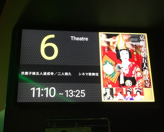 『京鹿子娘5人道成寺』